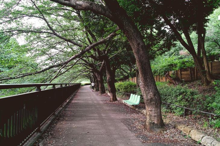 160703(仙川-17).jpg