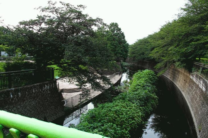 160703(仙川-18).jpg
