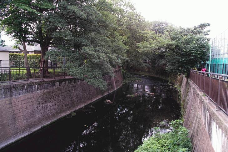 160703(仙川-24).jpg
