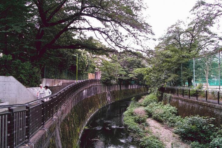 160703(仙川-26).jpg