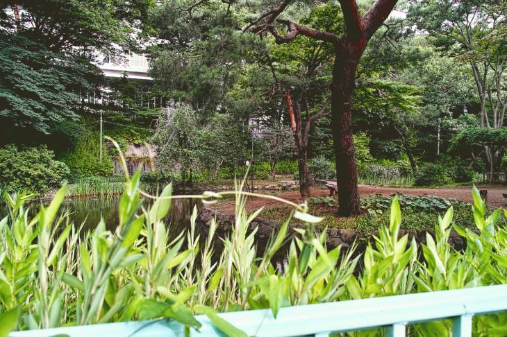 160703(仙川-28).jpg