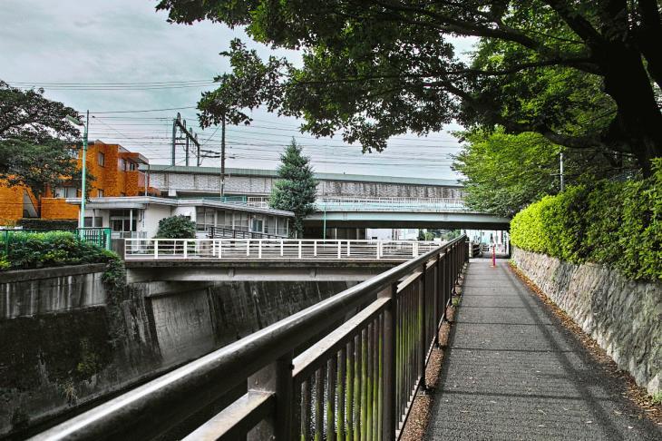 160703(仙川-30).jpg