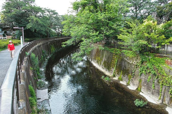 160703(仙川-32).jpg