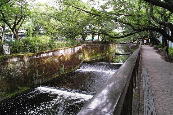160703(仙川-34).jpg