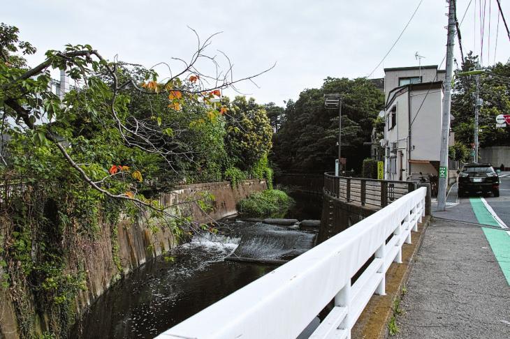 160703(仙川-38).jpg
