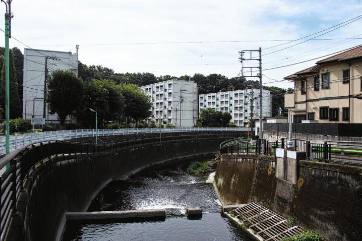 160703(仙川-41).jpg
