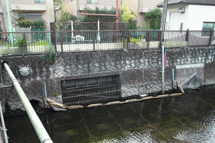 160703(仙川-52).jpg