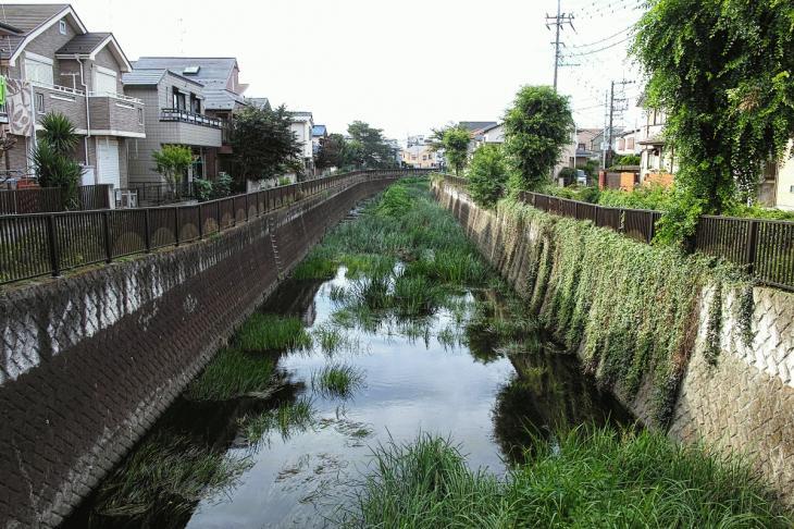 160703(仙川-6).jpg