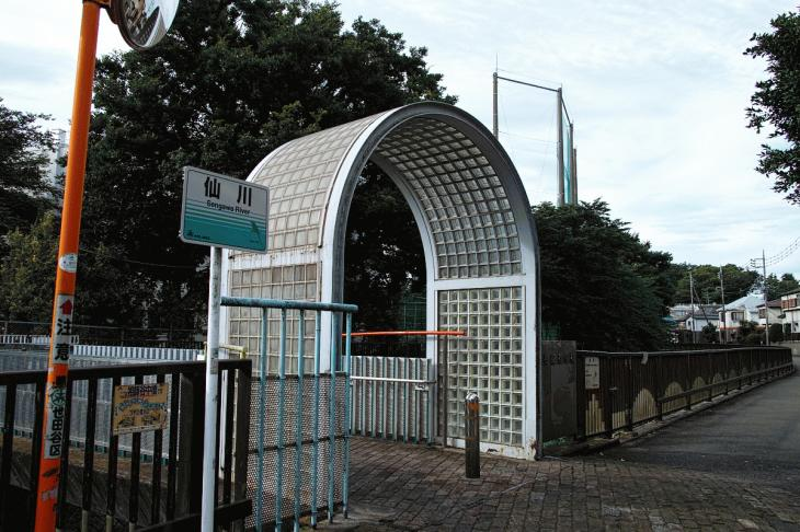 160703(仙川-7).jpg