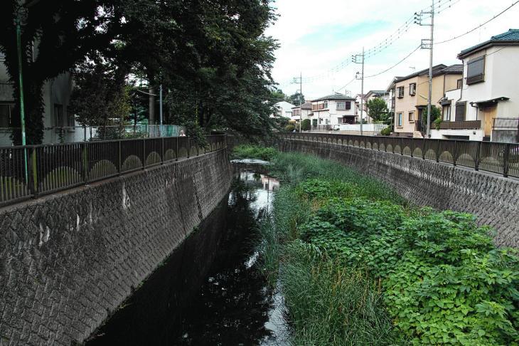160703(仙川-8).jpg