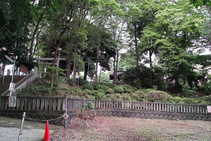 160703(仙川-9).jpg