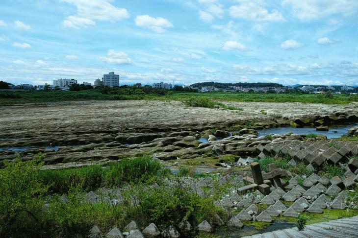 160710(多摩川-40).jpg