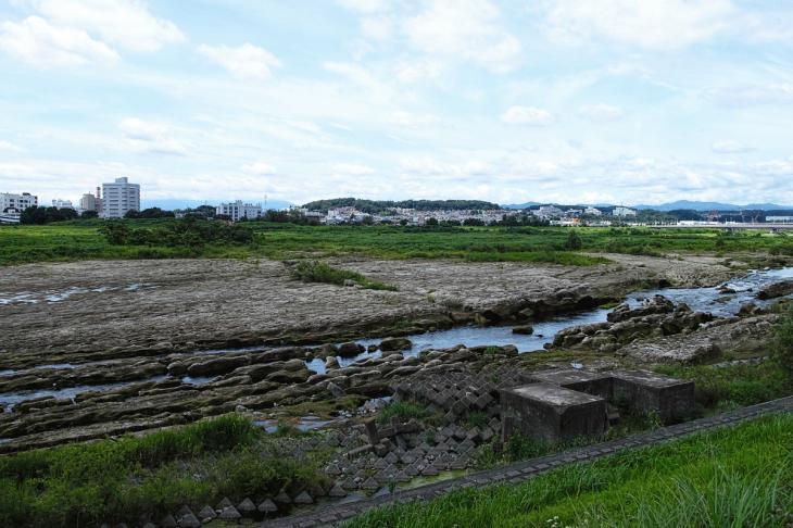 160710(多摩川-42).jpg