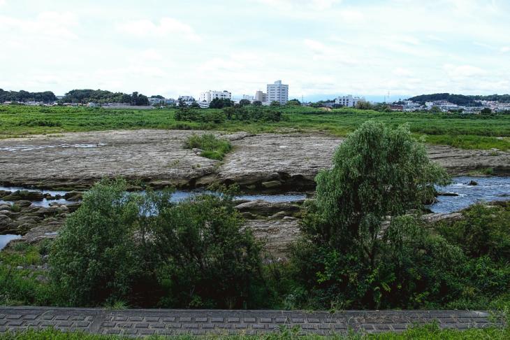 160710(多摩川-44).jpg
