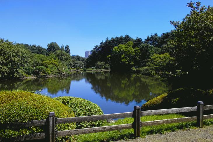 160730shinjyukugyoen-106.jpg