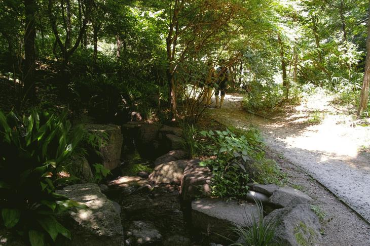 160730shinjyukugyoen-19.jpg