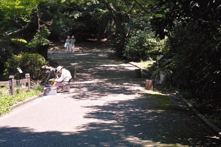 160730shinjyukugyoen-39.jpg