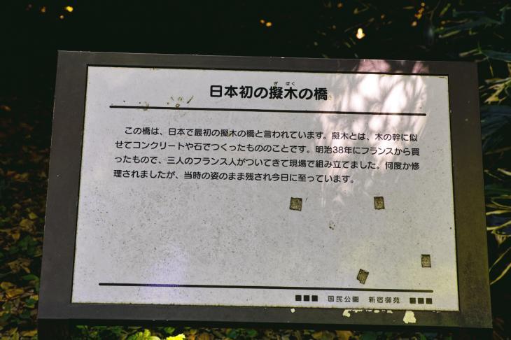 160730shinjyukugyoen-45.jpg