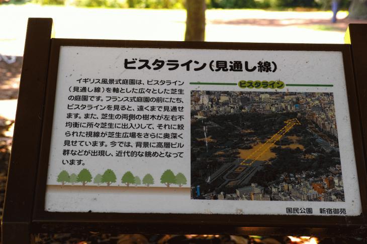 160730shinjyukugyoen-6.jpg