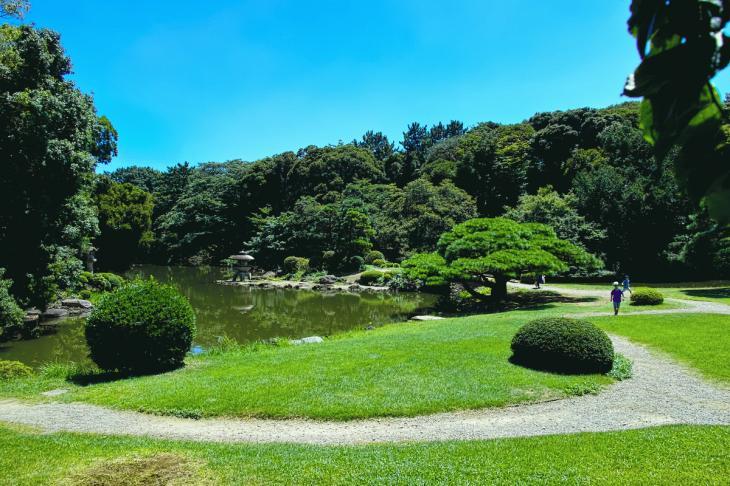 160730shinjyukugyoen-73.jpg