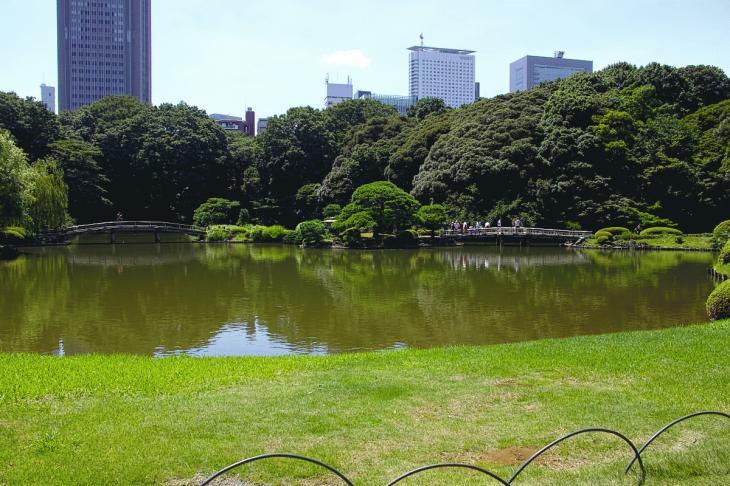 160730shinjyukugyoen-93.jpg