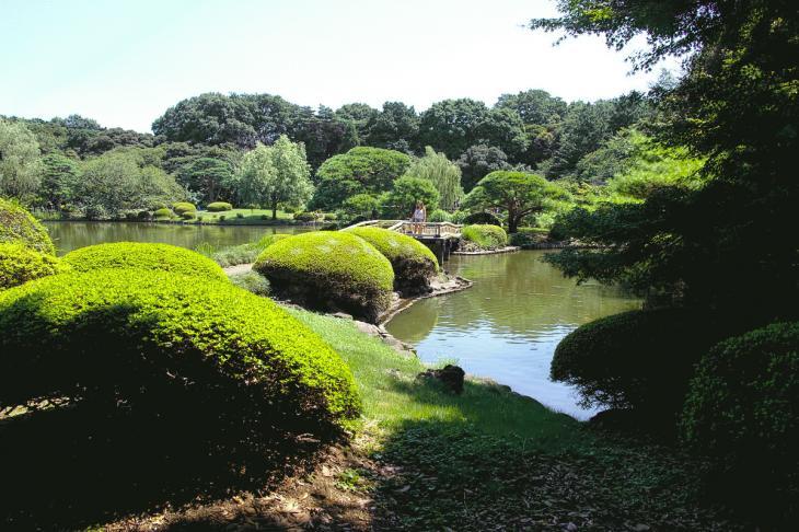 160730shinjyukugyoen-94.jpg