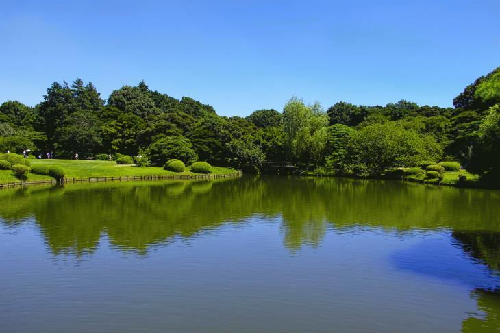 160730shinjyukugyoen-96.jpg
