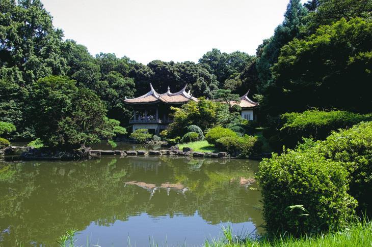 160730shinjyukugyoen-99.jpg