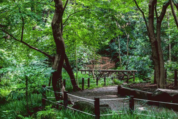 160821有栖川公園-10.jpg