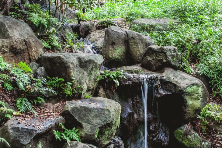 160821有栖川公園-11.1.jpg