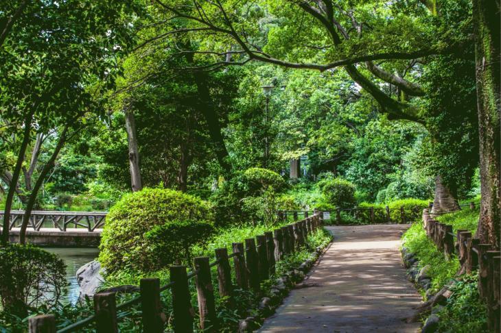 160821有栖川公園-13.jpg