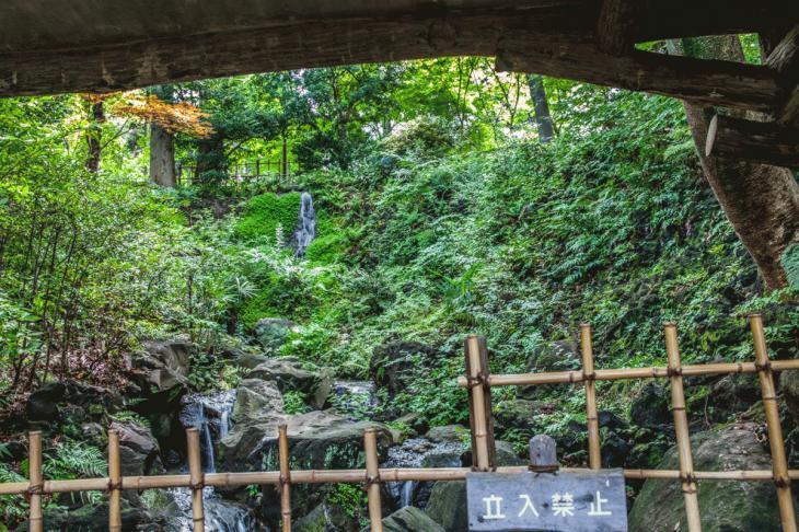 160821有栖川公園-15.jpg