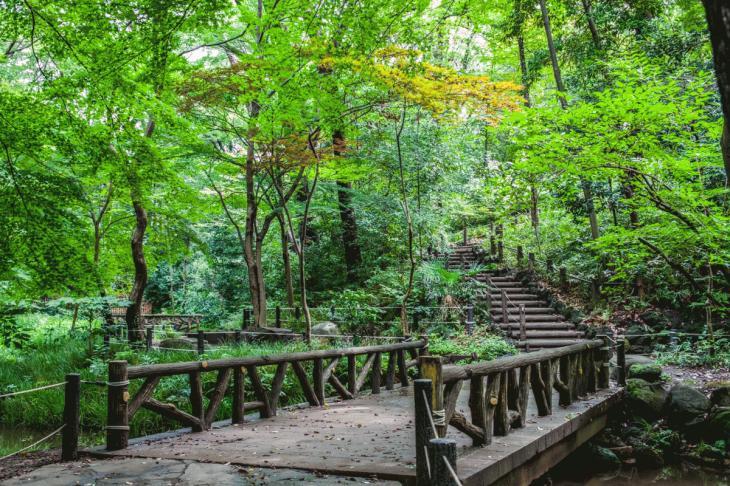 160821有栖川公園-23.jpg