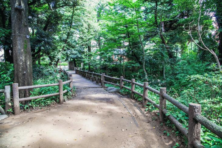 160821有栖川公園-30.jpg