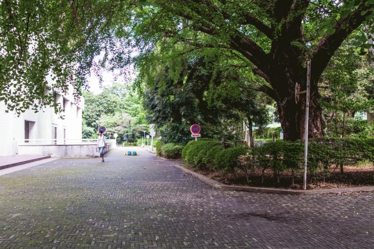 160821有栖川公園-33.jpg