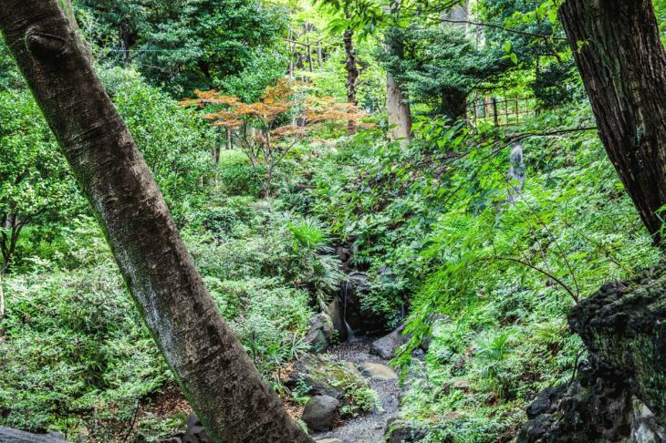 160821有栖川公園-41.jpg