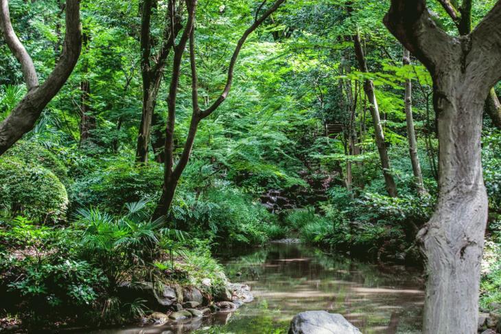160821有栖川公園-9.jpg