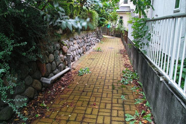 160903中仙川-100.jpg