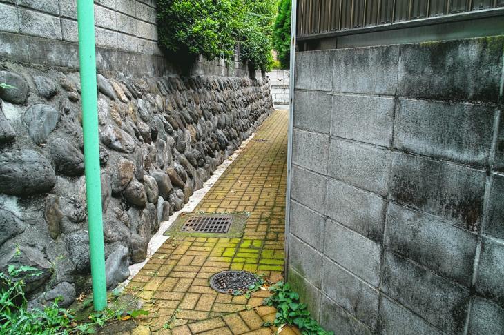 160903中仙川-101.jpg