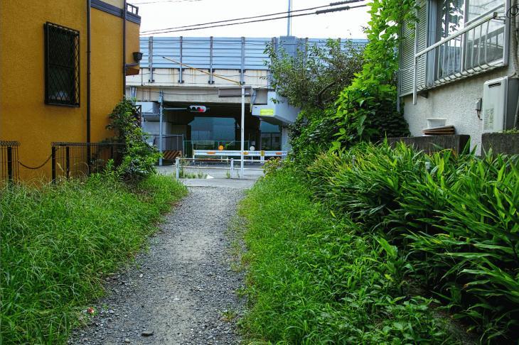 160903中仙川-11.jpg