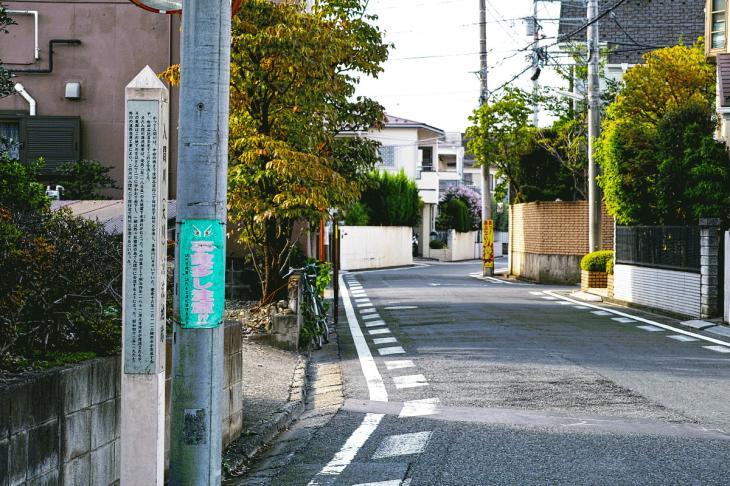 160903中仙川-2.jpg