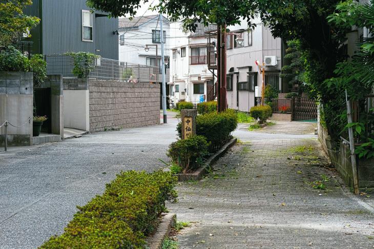 160903中仙川-24.jpg