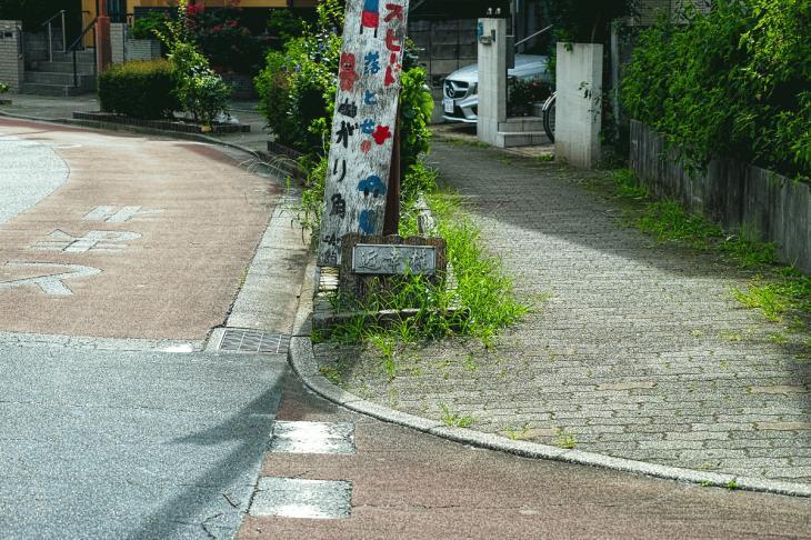 160903中仙川-25.jpg