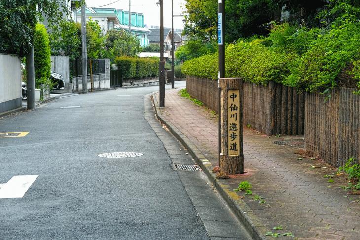 160903中仙川-28.jpg