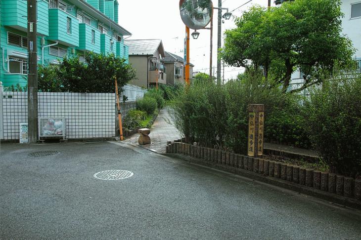 160903中仙川-29.jpg