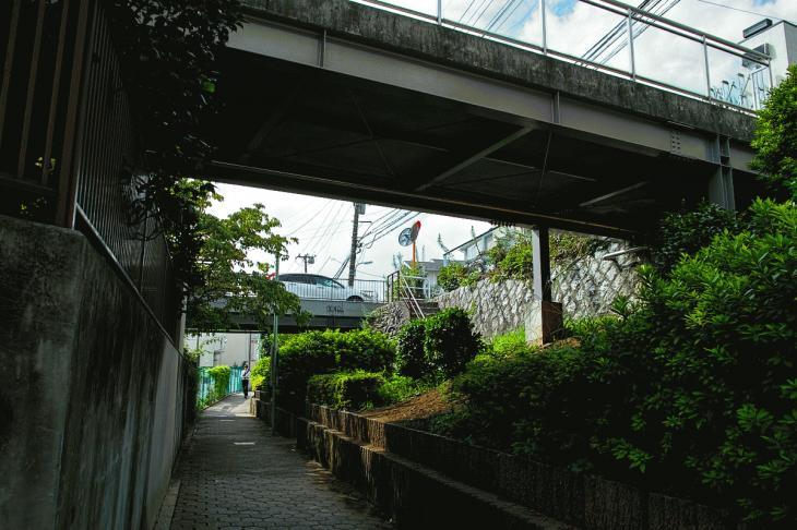 160903中仙川-32.jpg
