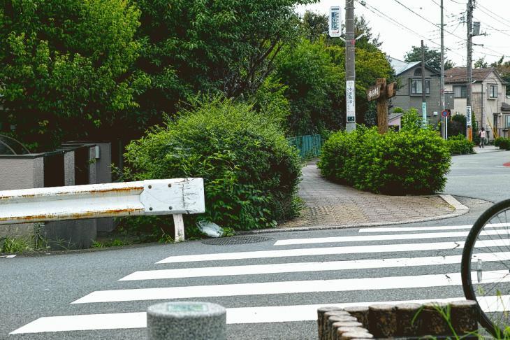 160903中仙川-33.jpg