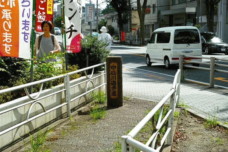 160903中仙川-36.jpg