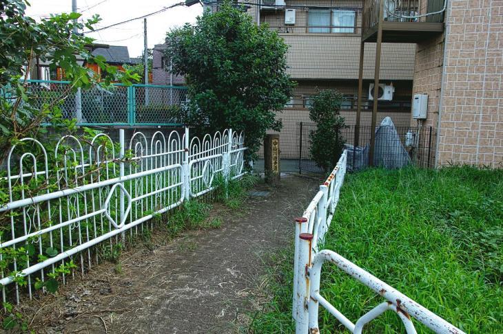 160903中仙川-38.jpg