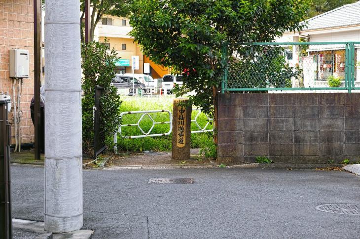 160903中仙川-39.jpg